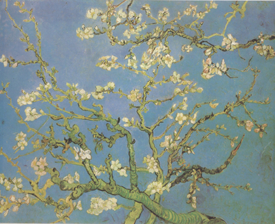 Vincent Van Gogh Blossoming Almond Tree (nn04)
