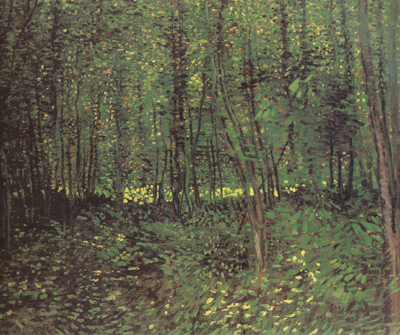 Vincent Van Gogh Trees and Undergroth (nn04)