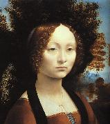 Leonardo  Da Vinci Portrait of Ginerva de'Benci Sweden oil painting reproduction