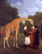 Jacques-Laurent Agasse The Nubian Giraffe oil painting picture wholesale