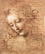 LEONARDO da Vinci, Madchenkopf with confused hair