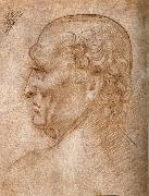LEONARDO da Vinci, Master of the Pala Sforzesca, profile of an old man