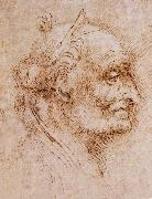 LEONARDO da Vinci, Aurelio Luini attributed, profile of an old man