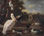 unknow artist, A Pelican and other exotic birds in a park