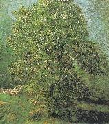 Vincent Van Gogh, Blossoming Chestnut Tree