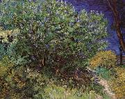 Vincent Van Gogh, Bushes