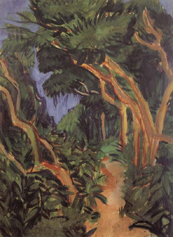 Ernst Ludwig Kirchner Fehmarn Landscape-forest path Spain oil painting art