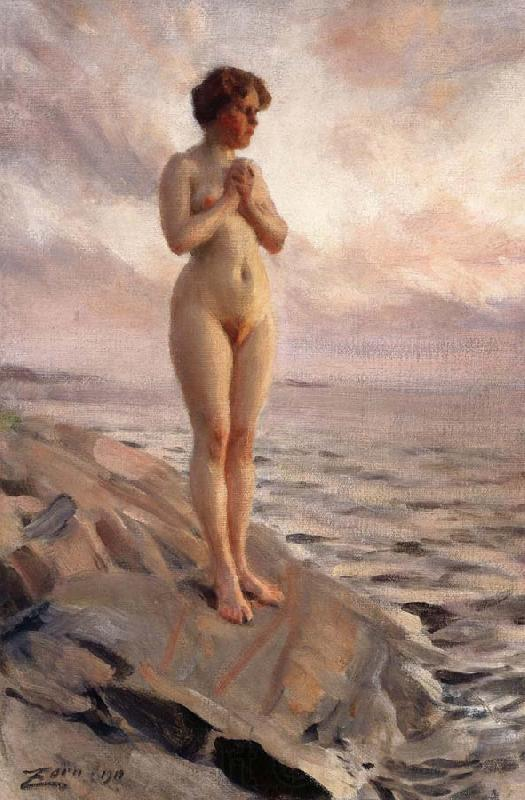 Anders Zorn Female Nude