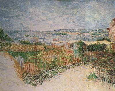 a short biography of vincent van gogh a major post impressionist painter Short biography vincent van gogh  of his post and van gogh turned to  last two years of his life that van gogh was at his most productive as a painter.